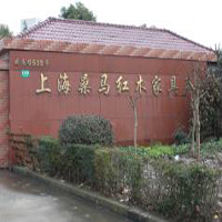 【75号商铺】上海桑马红木家具有限公司